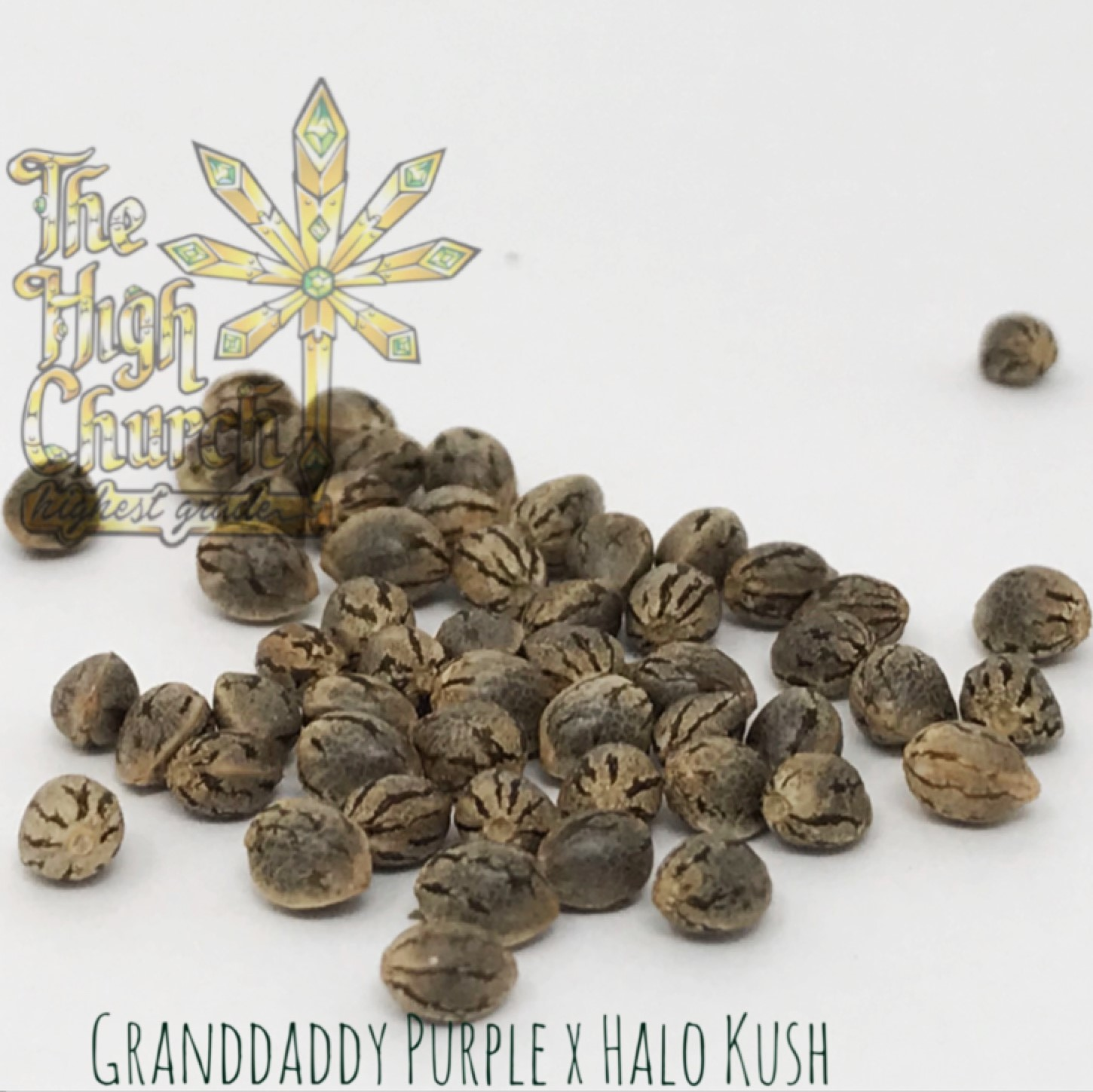 Granddaddy's Halo Seeds